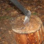 certova-skala-silvestr-2006-071