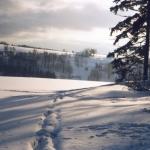 img966-silvestrovskej-vejslap-2001-pohled-od-certovy-skaly